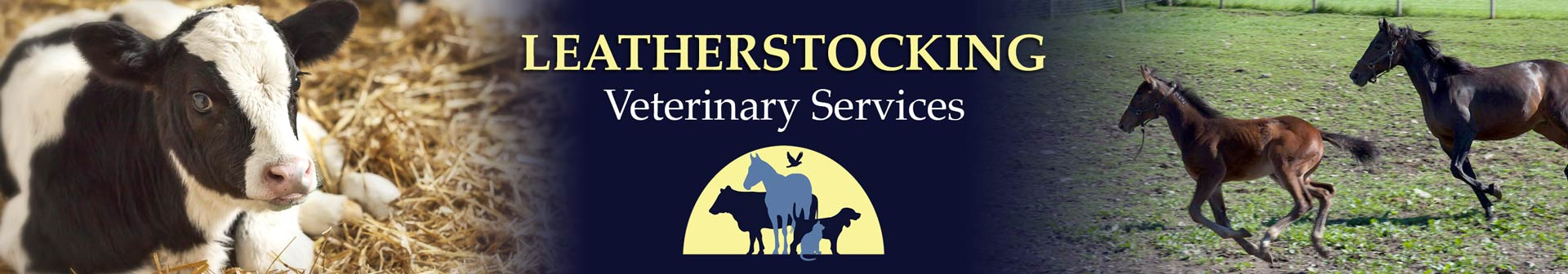 Leatherstocking Veterinary Services